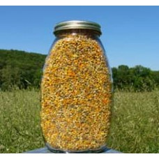 Fresh Bee Pollen, 16 oz